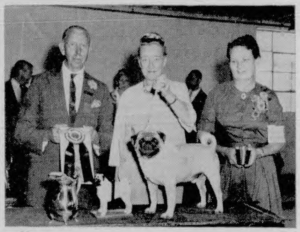 American Kennel Gazette Dec 1963; Ch. Sabbaday Echo Best of Breed